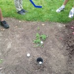 Mini-Golf Hole In Garden